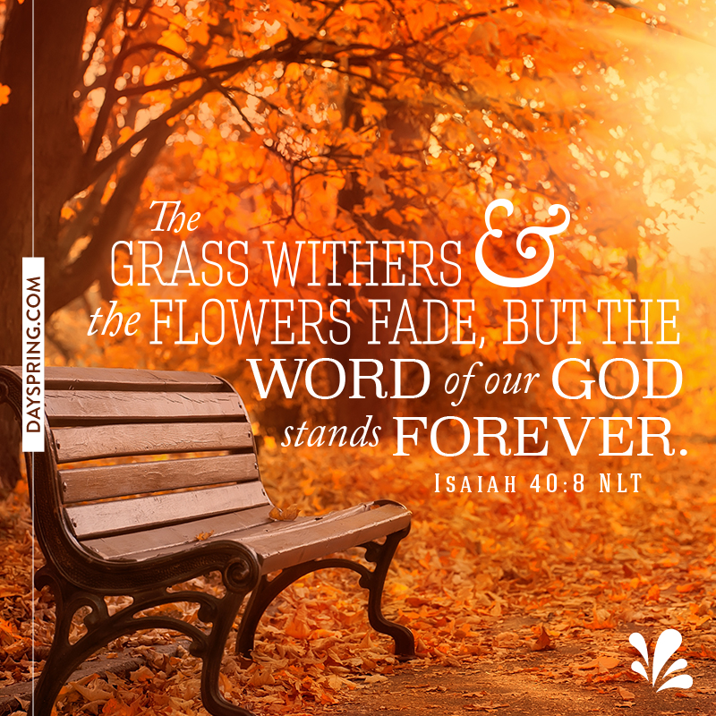 Scripture Graphics | One Accord Ministries | Page 2